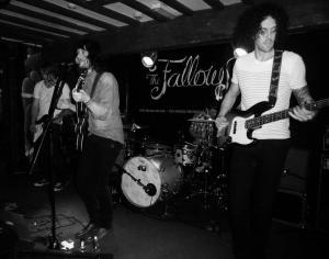 Fallows
